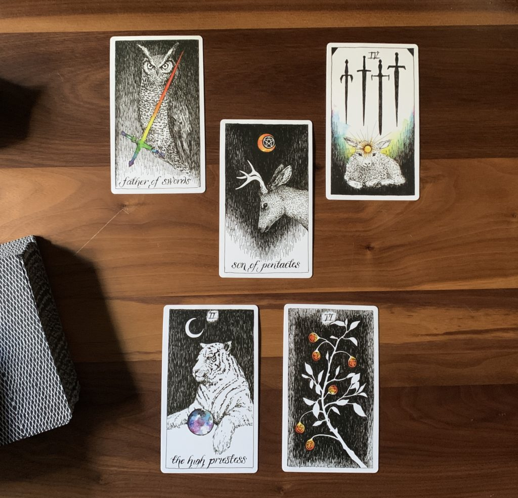 Five card spread with Kim Krans' Wild Unknown deck. Father of swords on the top left, Four of swords on the top right, Son of pentacles in the middle, High Priestess on the lower left, and the Six of pentacles on the lower right.